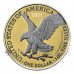 American Eagle - The New Heritage Exclusive Edition 1 USD 2 x 1oz Set USA 2021