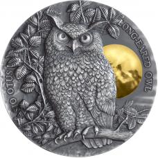 Long Eared Owl 5$ 2oz Niue 2019