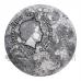 Moon Rabbit - Oriental Culture Collection 2$ 50g Niue 2021